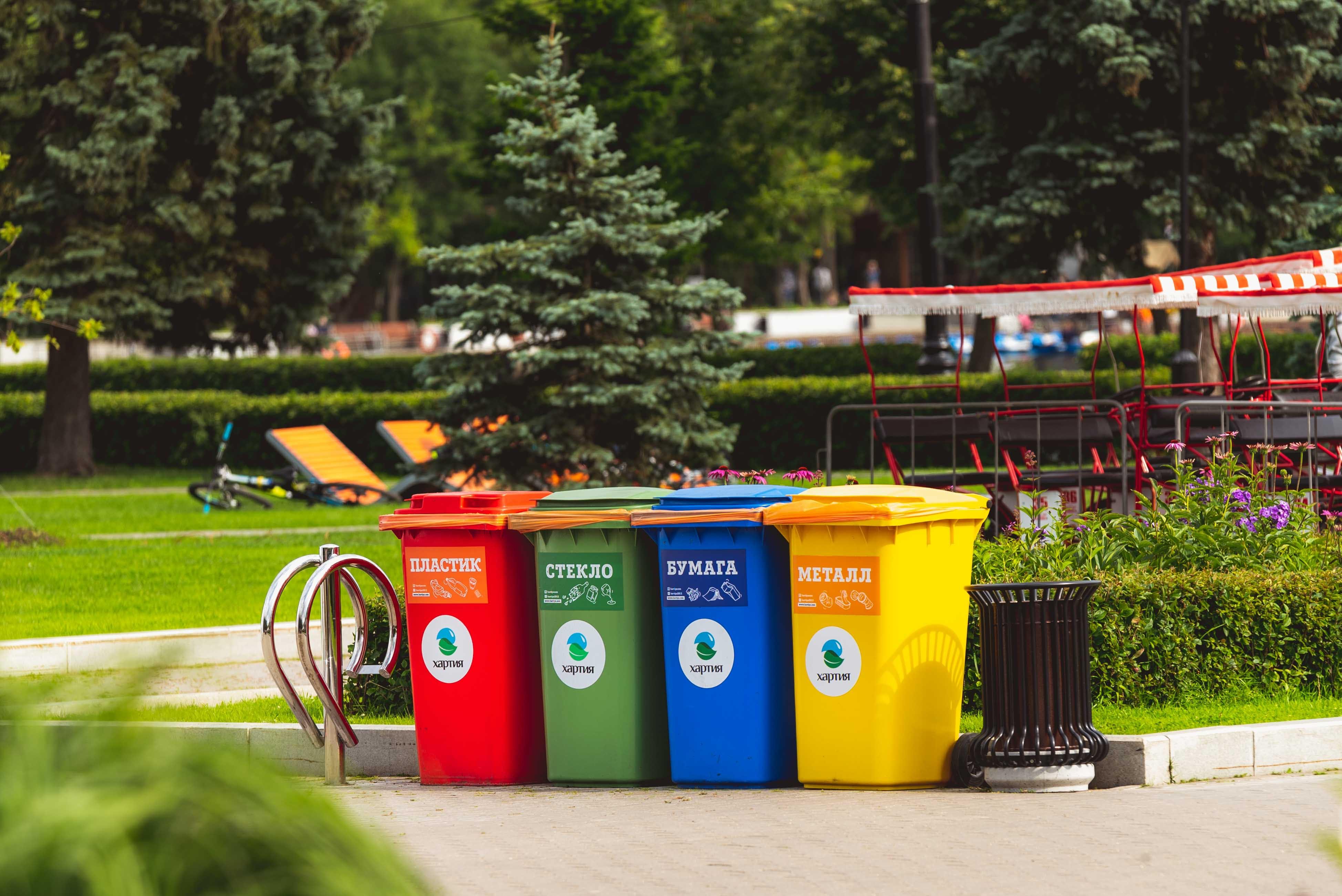 Sampah Organik